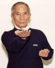 ip-chun-doing-a-tan-sau-technique